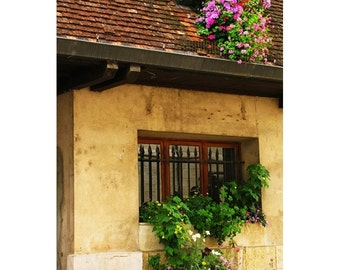 "Fine Art Color Travel Photography of France - ""Flowers On the Roof in Beaune"""