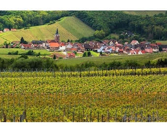 Fine Art Color Landscape Photography of Rodern Among the Vineyards of Alsace France