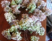 Dried Hydrangeas Light Green, Mauve, Brown Colored  Flowers 20 plus flower stems