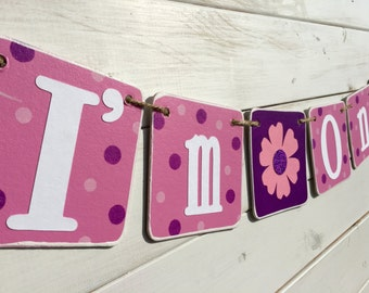 I'M ONE Birthday Banner, Baby Girl Birthday, first birthday, pink and purple, Doc McStuffins inspired, Birthday Girl, First Birthday Party