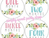 floral baby month milestone stickers, flower month stickers, watercolor floral baby month stickers, pink and blue, set of 12 stickers
