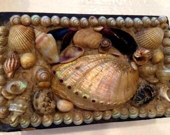 Stunning Victorian Shell Art Box, 1800's, Antique Sea Shell Box, Vanity, Beautiful 19th Century Shell Jewelry Box