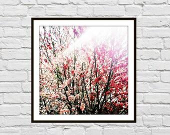 Hot Pink Tree 5x5 Art Print