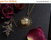 SALE Memento Mori Snake Bones under Glass Necklace // Natural History Specimen Jar Necklace // Natural Jewelry Glass Globe Necklace