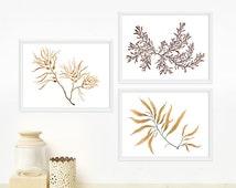 Seaweed Botanical Print Set - Any THREE Watercolor Art Prints / 8x10 OR 8x11 Minimal Wall Art, Home Decor
