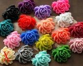17 pcs Wholesale Beautiful Mix Colorful Rose Flower Resin Cabochon  -17colors-20X23mm(CAB-BW -MIXSS)