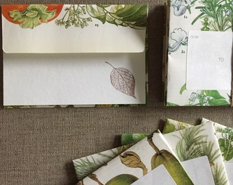 Botanical Garden Note Card Set - Edible Plants- 5 upcycled book page envelopes and 5 folded note cards