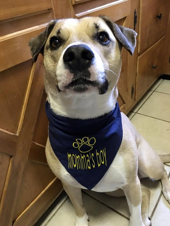 Momma's Boy or Daddy's Girl with Paw Print  Embroidered Dog Bandana