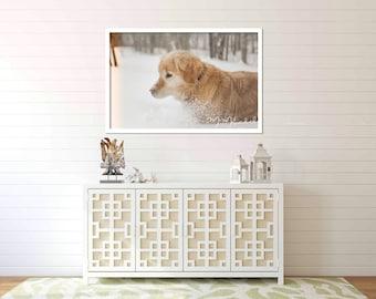 Photographic Wall Art - Snowy Dog Light leak - Photographic Print