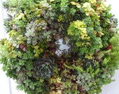 Living Wreath  Patio Wreath   Mother's Day Gift  Natural Wreath  Centerpiece   Wedding Wreath   Natural Wreath   Succulent Wreath