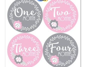 Floral Baby Girl Monthly Sticker Month Pink Grey