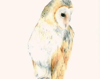 Owl Art Fine Art print from Original Watercolor Painting Barn Owl