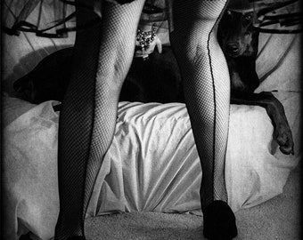 Fine Art Photography, Vintage Photograph, Doberman Dog, Fishnet Stockings, Home Decor