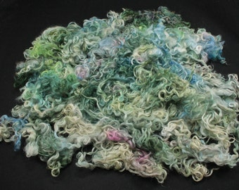 Teeswater  locks, hand painted fiber fleece for spinning and felting, 5.2 oz