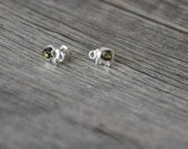 Natural  Baltic Amber Elephant  Earrings Studs