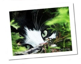 """Tuxedo Cat Card - """"Cat Eyes Speak"""" (5.5 x 4.25)"""