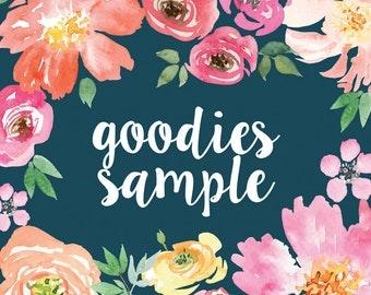 Goodies Sample