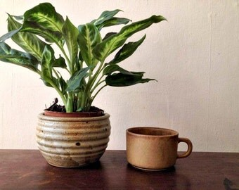 Vintage Tan Stoneware Pottery Mug