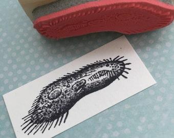 Paramecium Microbe Rubber Stamp