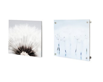 Stunning beautiful Acrylic face Metallic surface Photography - Unique and vibrant- home-office-wall accent~