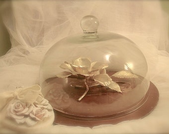 vintage LARGE glass cloche, cheese platter, cake cover, art display cloche, cake dome, cheese dome