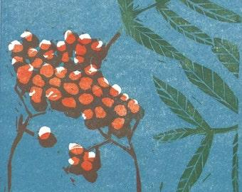 Rowan, original Linocut Print, FREE SHIPPING, Botanical Print, Archival, Flower, Winter, Block print, Red, Orange, blue, leaf, Wall decor