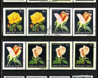 Roses on vintage postage stamps