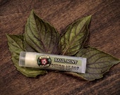 Lip Balm Natural BASIL MINT Organic Peppermint + Basil .15 oz Garden Cooking Spring