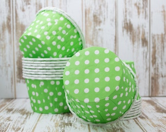 Kelly Green Polka Dot  Baking cupcake liners  muffin cups Candy Cup treat nuts  Ice cream dessert  portion cups - 24 count