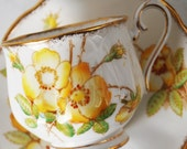Royal Albert Teacup and Saucer, Wild Rose Tea Cup by Royal Albert