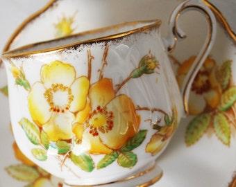 Royal Albert Teacup and Saucer, Wild Rose Tea Cup by Royal Albert