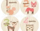 Monthly Baby Stickers Baby Girl Month Stickers One Piece Bodysuit Milestone Stickers Plus Gift Woodland Animal Fox Deer Owl Squirrel Nursery