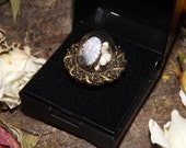 Sea Snail Shell & Coral Dome Ring - antiqued costume jewellery nature woodland natural taxidermy witchcraft wiccan pagan spirituality