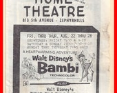 Vintage 1970's Movie Theater Announcement Brochure Advertising Florida
