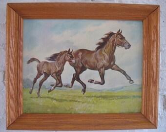 Vintage Print Framed Art - Horses