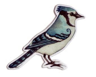 Blue Jay Bird Magnet