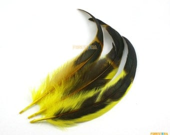 10 Pieces Yellow Feather 18-30cm (YM61)