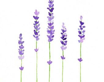 Lavender Watercolor Painting