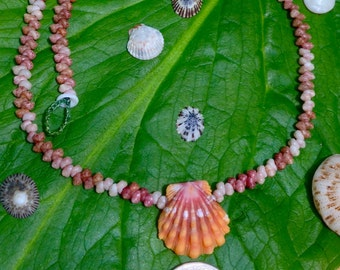 Sunrise Shell Kahelelani Lei Kauai Hawaii Shells Beach Jewelry Eco-Friendly Collected Rare Shells Island Mermaid Style Aloha Gift Reef Gems