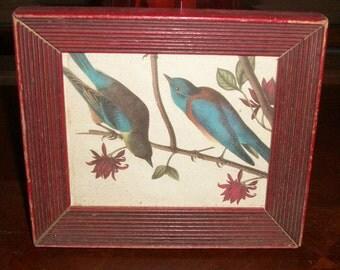 Vintage 60's Bird Art Print Wall Hangings