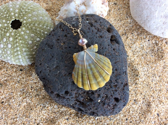 Hawaiian Sunrise Shell, Fresh Water Keshi Pearl, 14k Gold Filled Chain