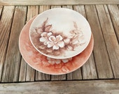 Vintage Hand Painted Floral Plates