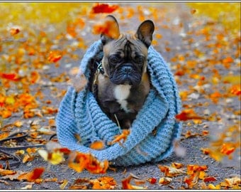 Pack of 4 Dog Puppy French Bulldog Autumn Halloween Fall Stationery Greeting Notecards / Envelopes