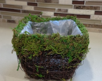 """4"""" Square Wicker Basket With Moss Rim"""