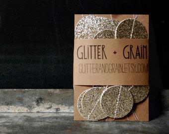 6' Silver Glitter Garland