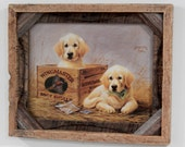Barnwood Frame with decorative puppies in a box photo
