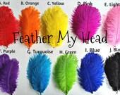 """Ostrich Feathers 5 Pc 6""""-8"""" Long (2.36-3.14cm) Pick Your Color"""