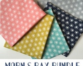 ORGANIC Morn's Ray Fabric ONE YARD Bundle from  Cloud 9 Fabrics - 5 Yards Total