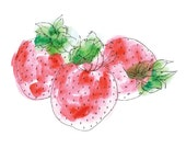 Print {Fruit Illustration} 21cm x 14.85cm: Strawberries Watercolor Illustration