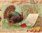 Vintage Thanksgiving Postcard, Turkey, Thanksgiving Proclamation, Tuck Postcard, 1910